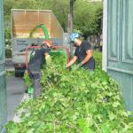 broyage vegetaux professionnel gard - abatout